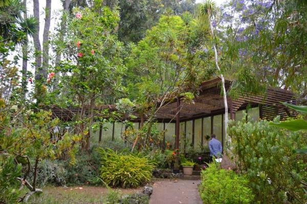 Path, Kula Botanic Garden, Maui HI